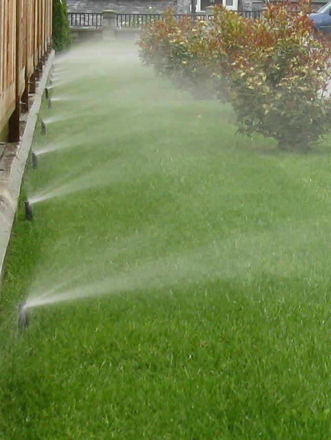 Irrigation Sprinkler Spray On Gr